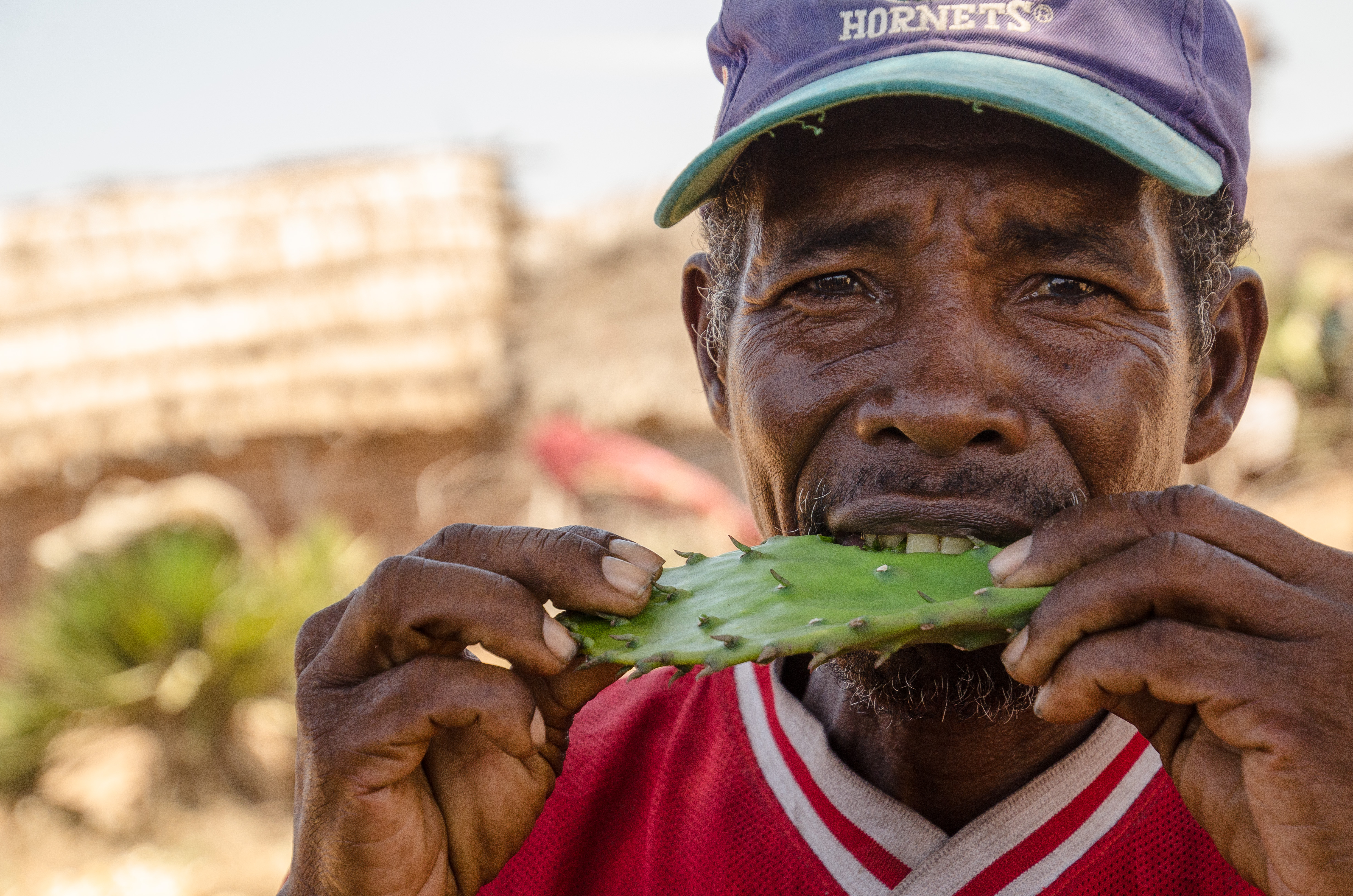 'I have one grasshopper but I will break it in half and give you half': A resilient country – Madagascar