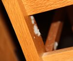 Mold on a chair in Woodcrest Residence Hall - Photo taken by Michelle Guerin