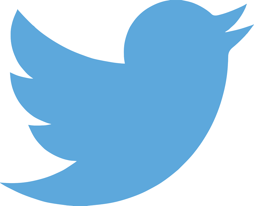 Birdwatch: Twitter's new feature to detect misinformation