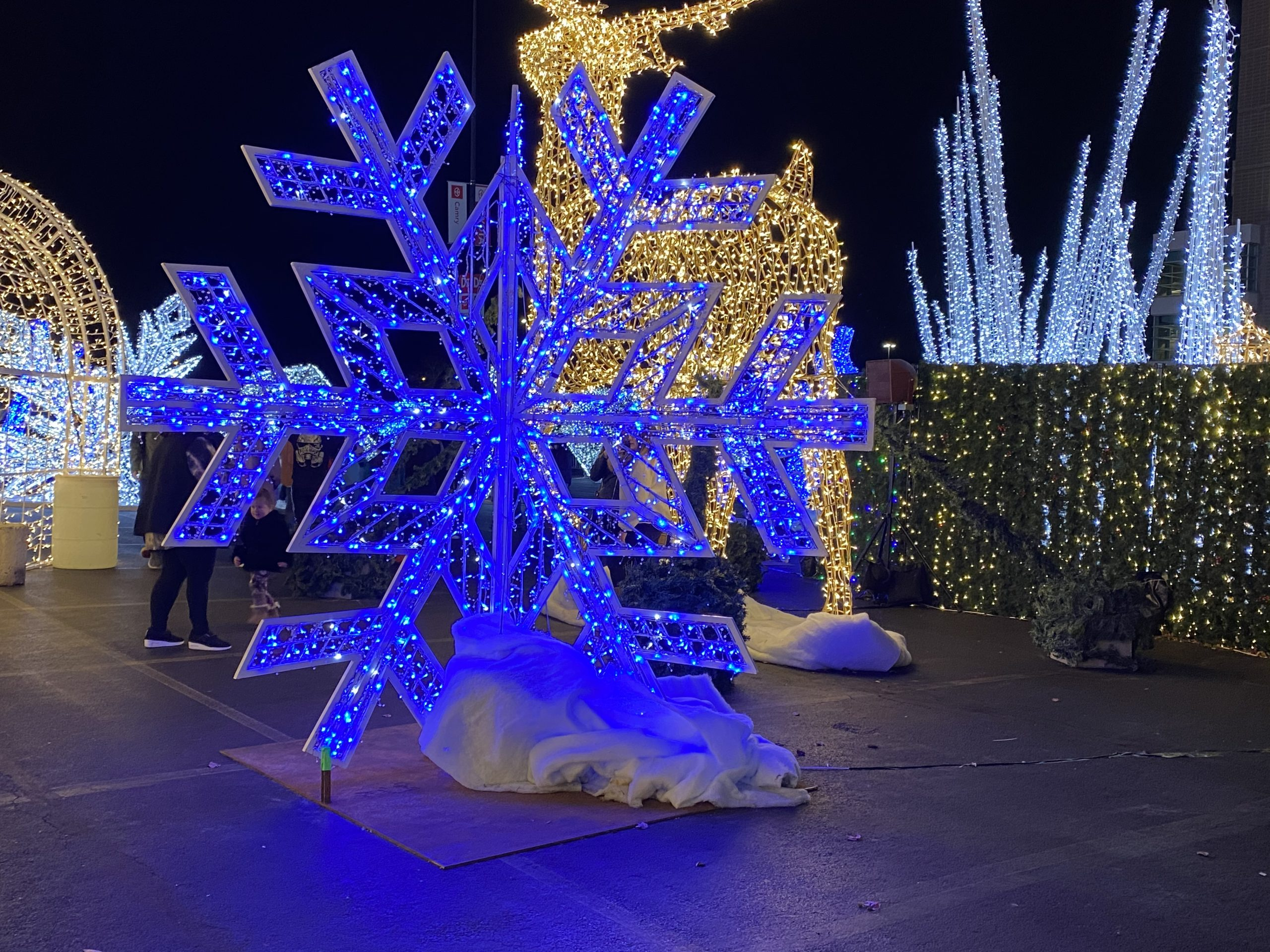 Winter on Broad – A light show in Philadelphia
