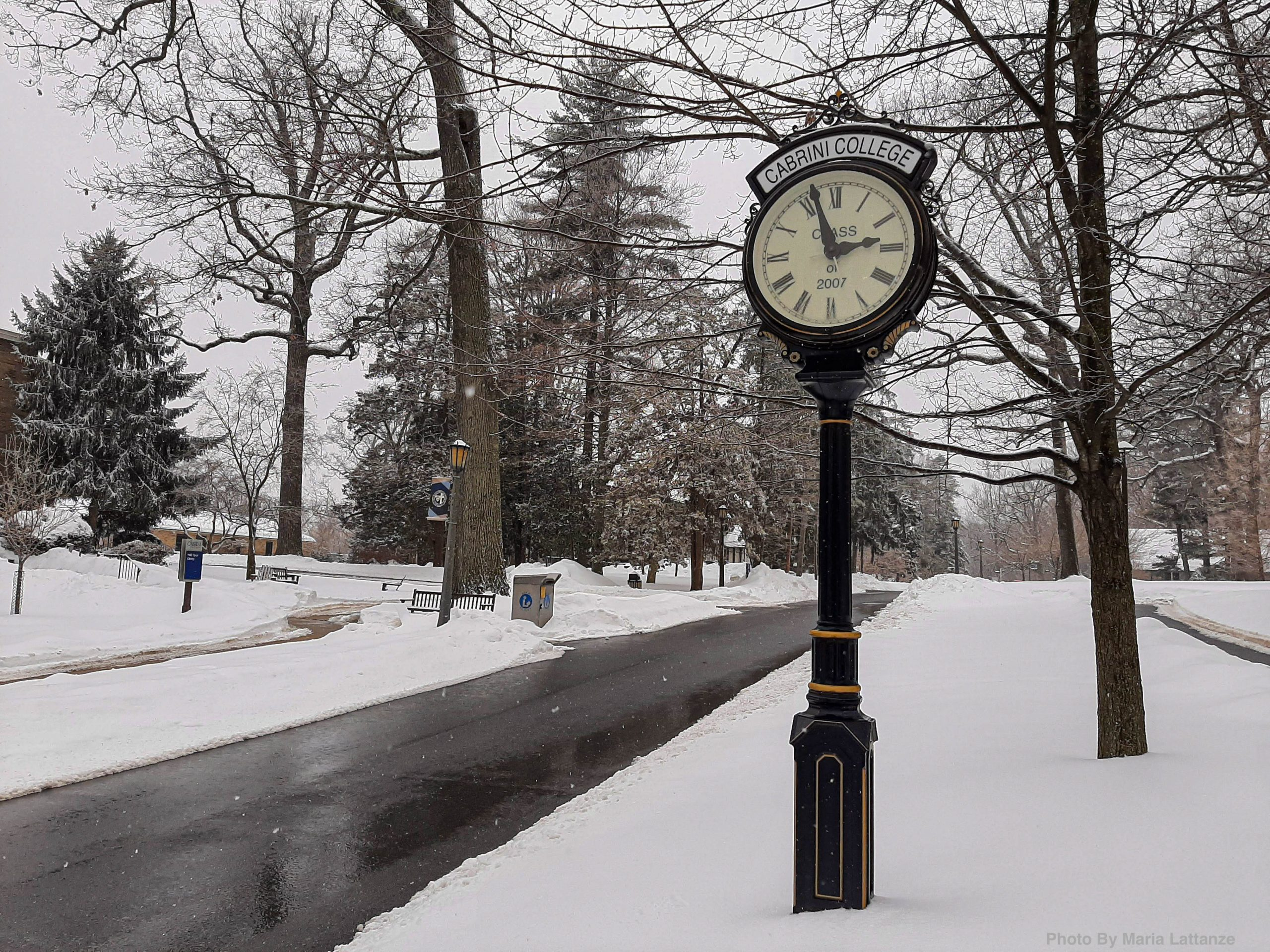 College students take advantage of virtual online learning during snow days