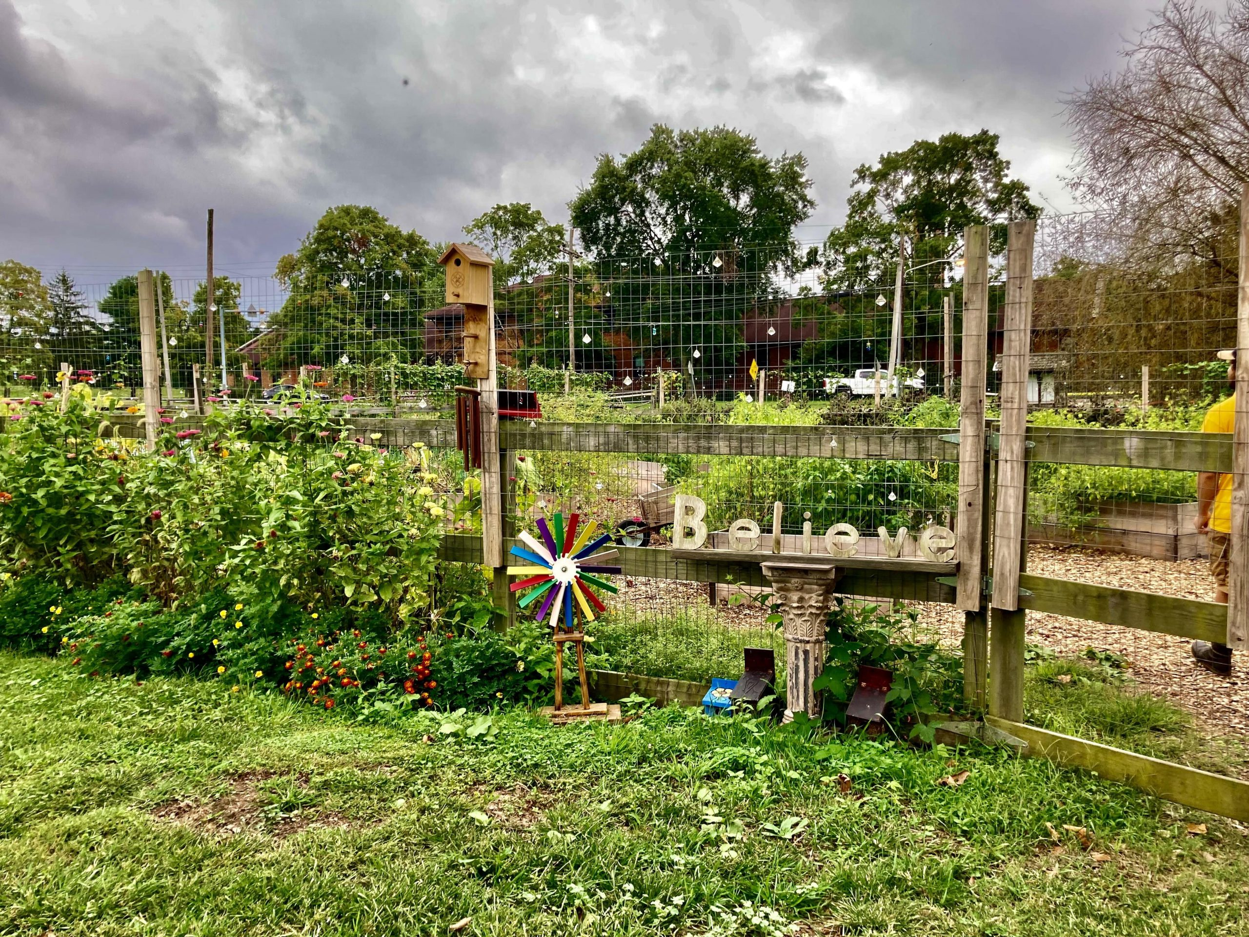 Take a peaceful trip down to Martha's farm, a community program tackling food insecurity